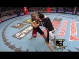 Gina Carano (самая красивая девушка в боях без правил и чемпионка мира по версии MMA)